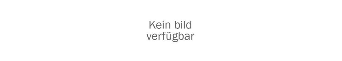 4.1. Aluzargen & Anschlagtürprofile